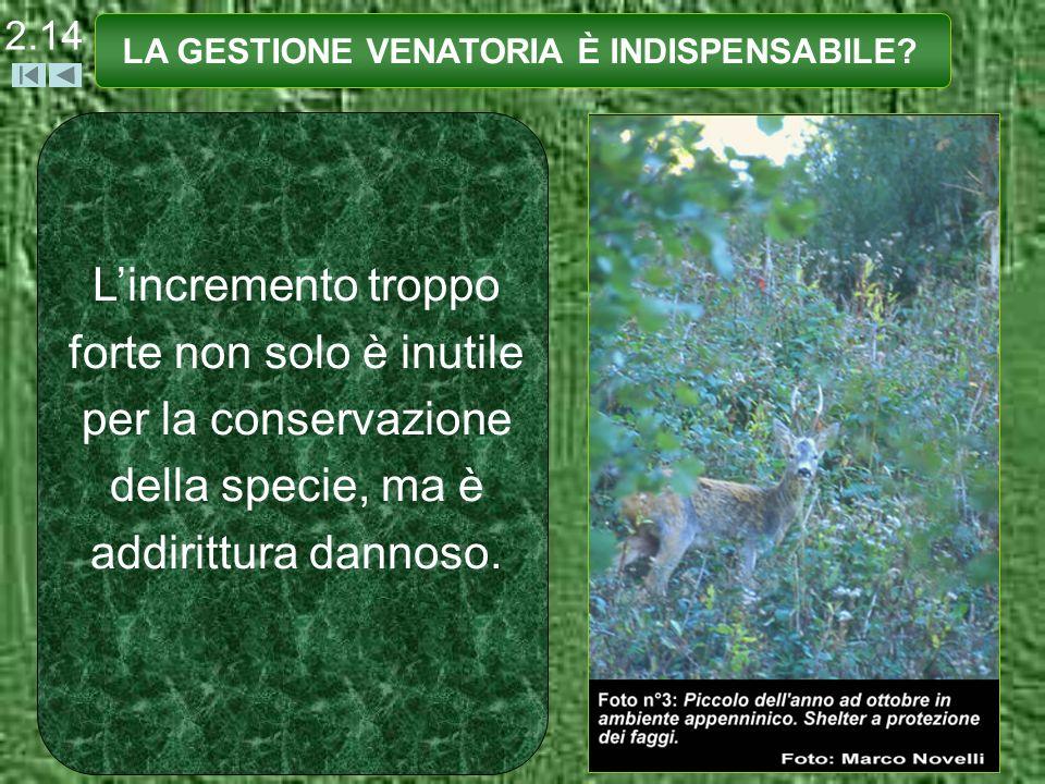 Lincremento troppo forte non solo è inutile per la conservazione della specie, ma è addirittura dannoso. LA GESTIONE VENATORIA È INDISPENSABILE? 2.14
