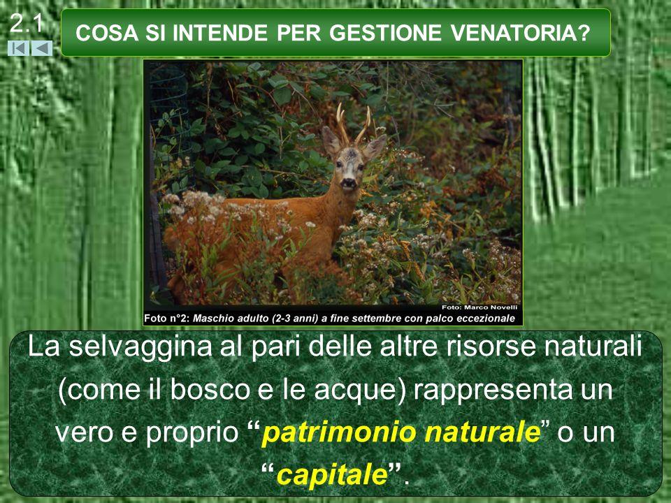 2.1 La selvaggina al pari delle altre risorse naturali (come il bosco e le acque) rappresenta un vero e proprio patrimonio naturale o uncapitale. COSA