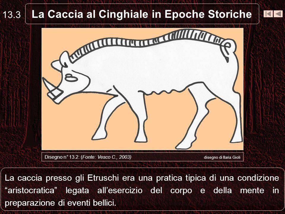 Gli Etruschi cacciavano il cinghiale con laiuto di feroci cani e con lausilio di strumenti musicali per attirare la selvaggina.