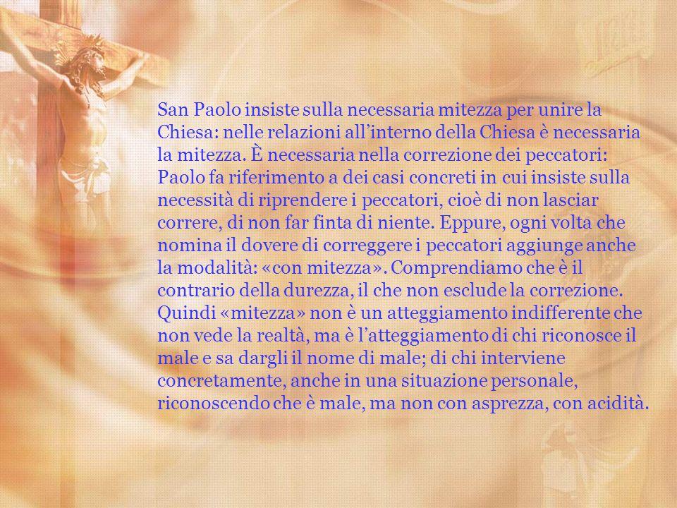 San Paolo insiste sulla necessaria mitezza per unire la Chiesa: nelle relazioni allinterno della Chiesa è necessaria la mitezza. È necessaria nella co