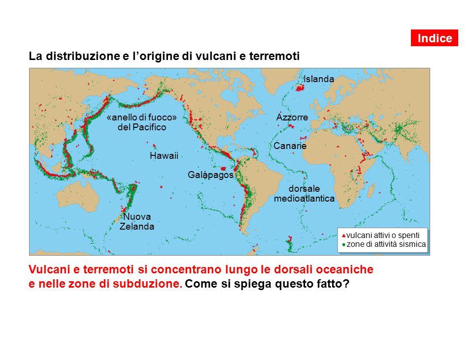 La distribuzione e l'origine di vulcani e terremoti Vulcani e terremoti si concentrano lungo le dorsali oceaniche e nelle zone di subduzione.