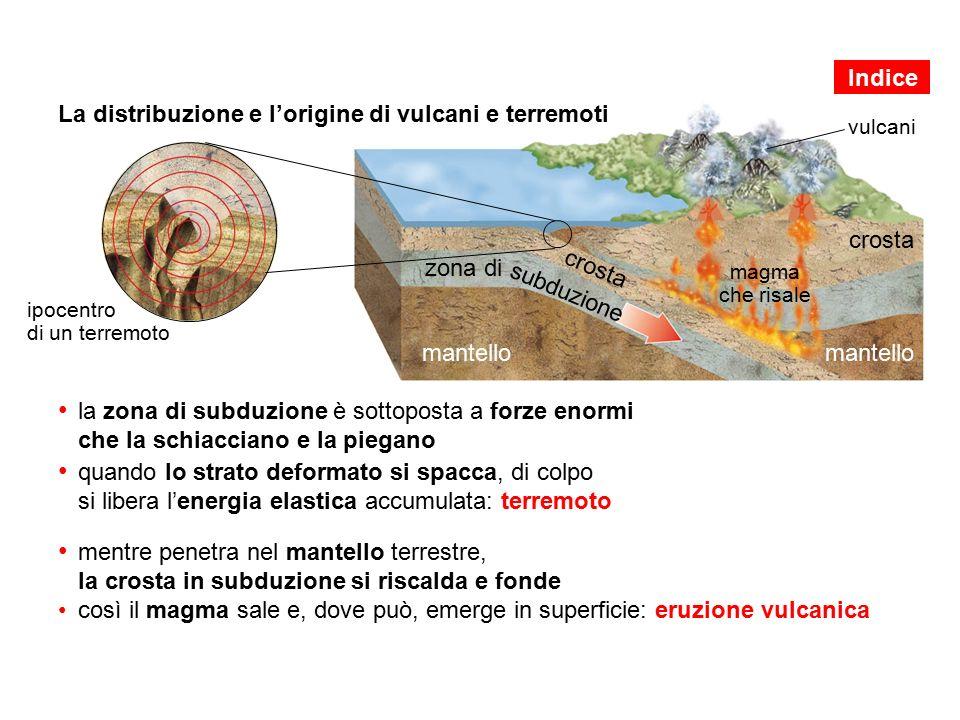 La distribuzione e l'origine di vulcani e terremoti la zona di subduzione è sottoposta a forze enormi che la schiacciano e la piegano quando lo strato deformato si spacca, di colpo si libera l'energia elastica accumulata: terremoto mentre penetra nel mantello terrestre, la crosta in subduzione si riscalda e fondecosì il magma sale e, dove può, emerge in superficie: eruzione vulcanica crosta mantello crosta mantello magma che risale zona di subduzione vulcani ipocentro di un terremoto Indice