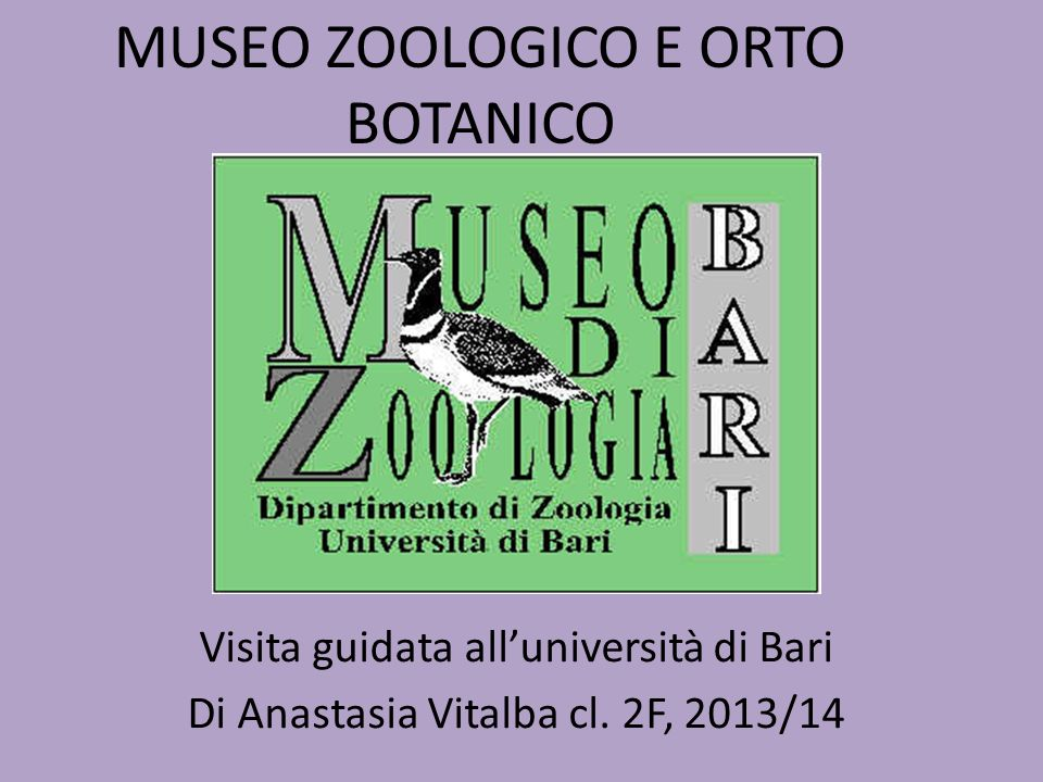 MUSEO ZOOLOGICO E ORTO BOTANICO Visita guidata all'università di Bari Di Anastasia Vitalba cl. 2F, 2013/14