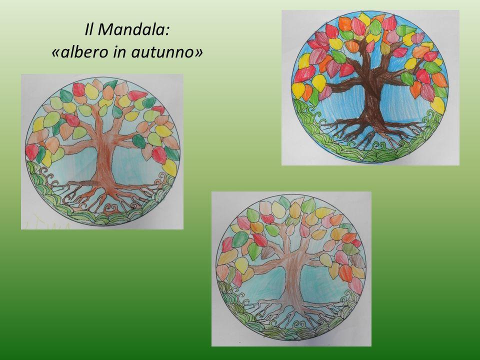 Il Mandala: «albero in autunno»