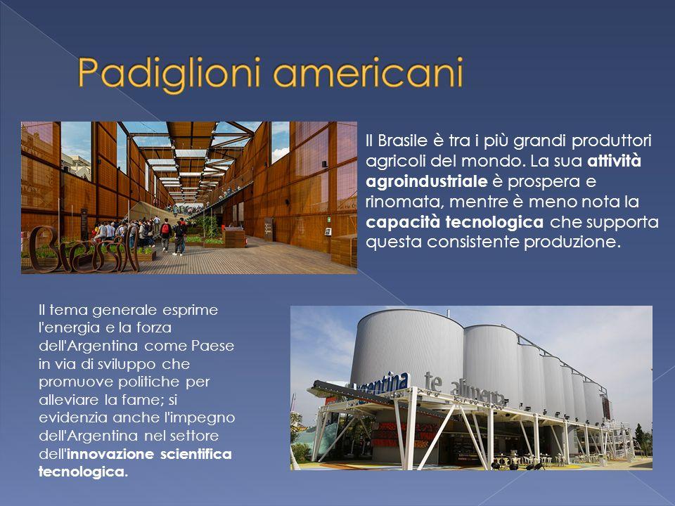 Il tema generale esprime l energia e la forza dell Argentina come Paese in via di sviluppo che promuove politiche per alleviare la fame; si evidenzia anche l impegno dell Argentina nel settore dell innovazione scientifica tecnologica.