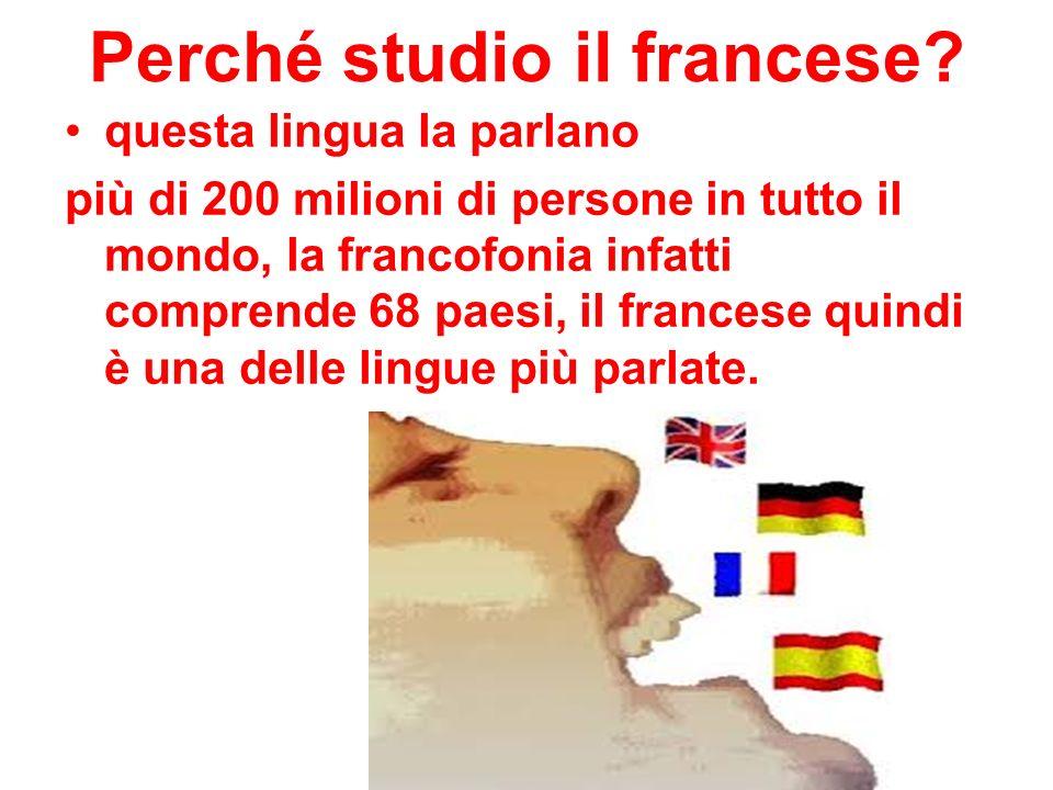 Perché studio il francese.