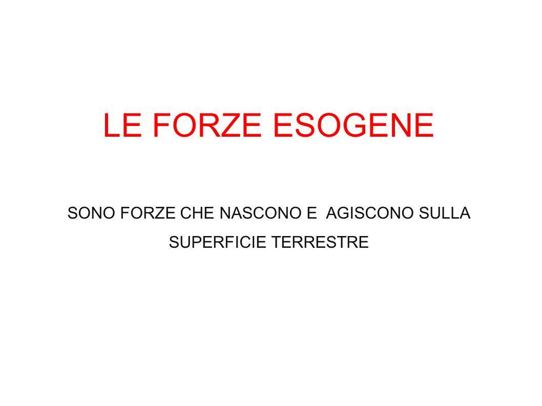 LE FORZE ESOGENE SONO FORZE CHE NASCONO E AGISCONO SULLA SUPERFICIE TERRESTRE