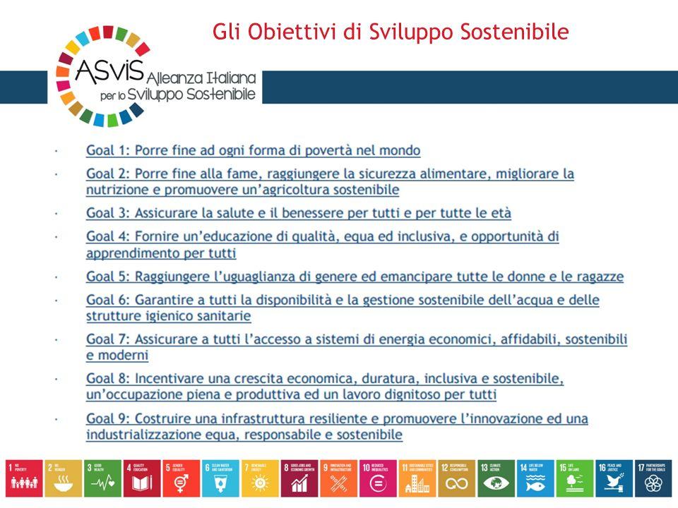 Quattro principali aree di lavoro: sensibilizzare gli operatori pubblici e privati, la pubblica opinione e i singoli cittadini valutare le implicazioni e le opportunità per l'Italia che derivano dall'adozione dell'Agenda educare allo sviluppo sostenibile, con particolare attenzione alle giovani generazioni, alle donne e ai decision makers predisporre adeguati strumenti di monitoraggio per il conseguimento degli SDGs in Italia L'Alleanza: il piano di attività