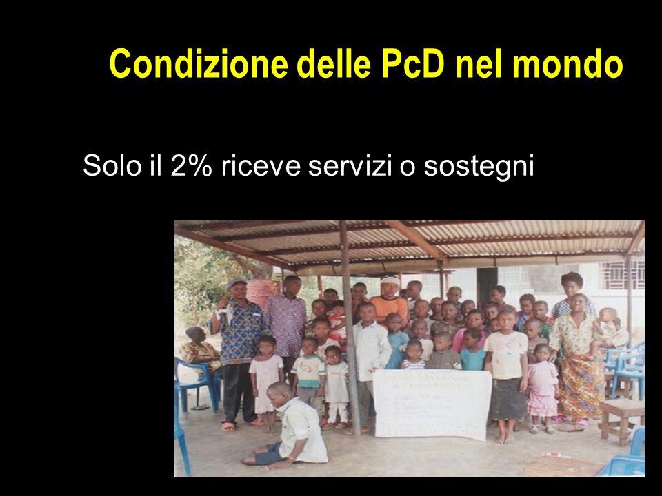 Condizione delle PcD nel mondo Solo il 2% riceve servizi o sostegni