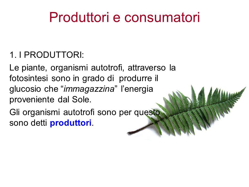 Produttori e consumatori 1.
