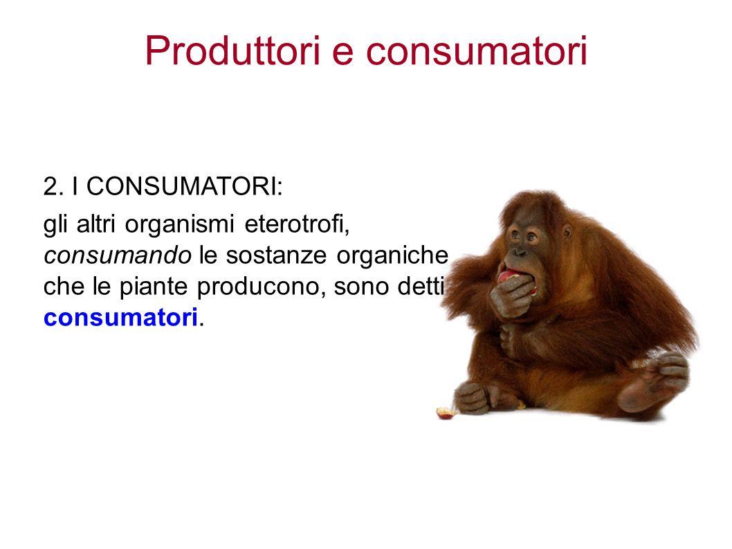 Produttori e consumatori 2.