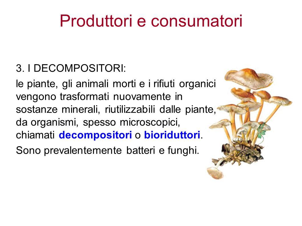 Produttori e consumatori 3.