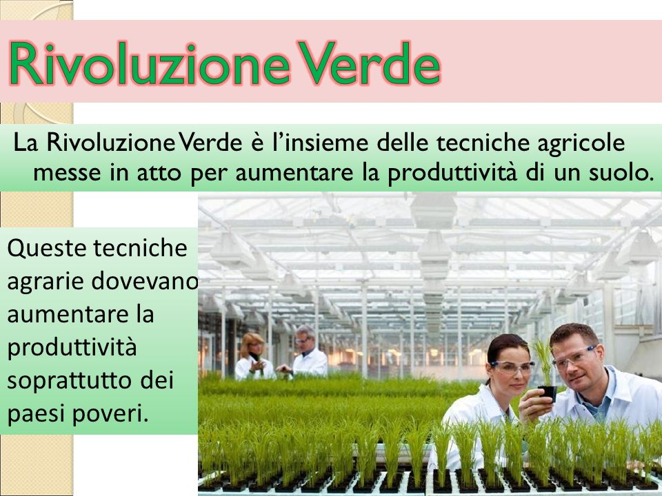 La Rivoluzione Verde è l'insieme delle tecniche agricole messe in atto per aumentare la produttività di un suolo. Queste tecniche agrarie dovevano aum