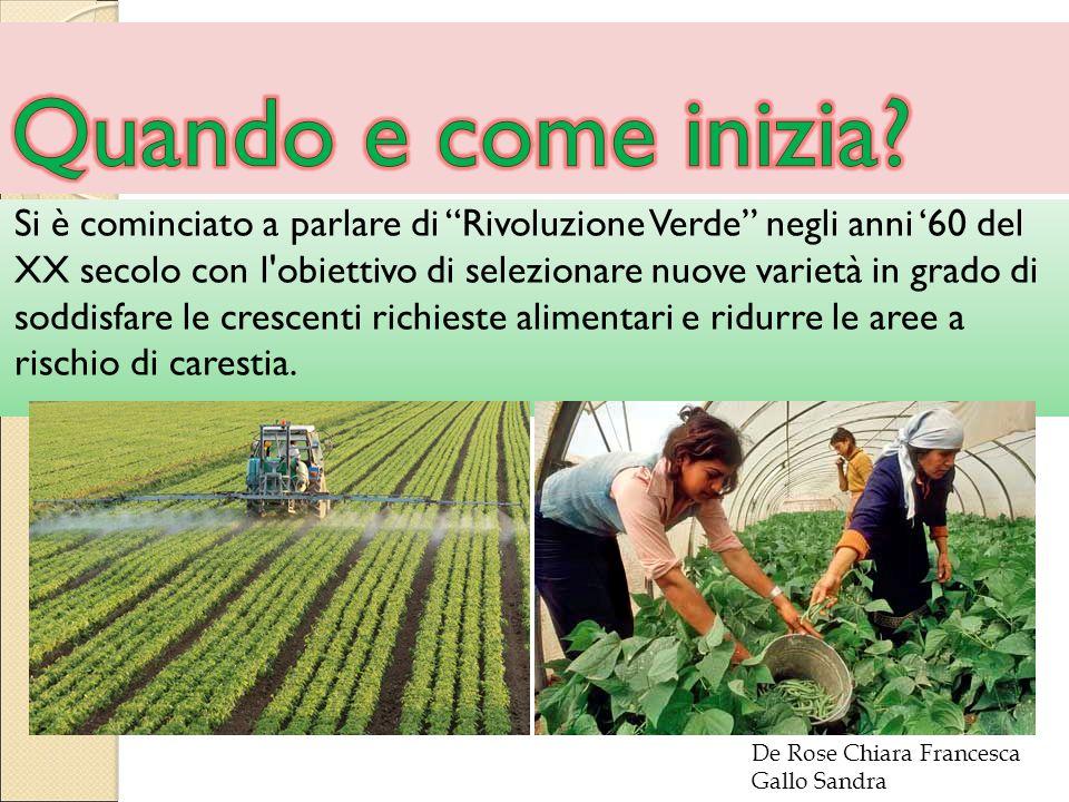 Si è cominciato a parlare di Rivoluzione Verde negli anni '60 del XX secolo con l obiettivo di selezionare nuove varietà in grado di soddisfare le crescenti richieste alimentari e ridurre le aree a rischio di carestia.