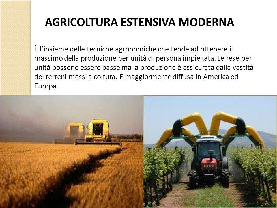 È l'insieme delle tecniche agronomiche che tende ad ottenere il massimo della produzione per unità di persona impiegata. Le rese per unità possono ess