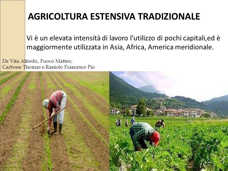 AGRICOLTURA ESTENSIVA TRADIZIONALE Vi è un elevata intensità di lavoro l'utilizzo di pochi capitali,ed è maggiormente utilizzata in Asia, Africa, Amer