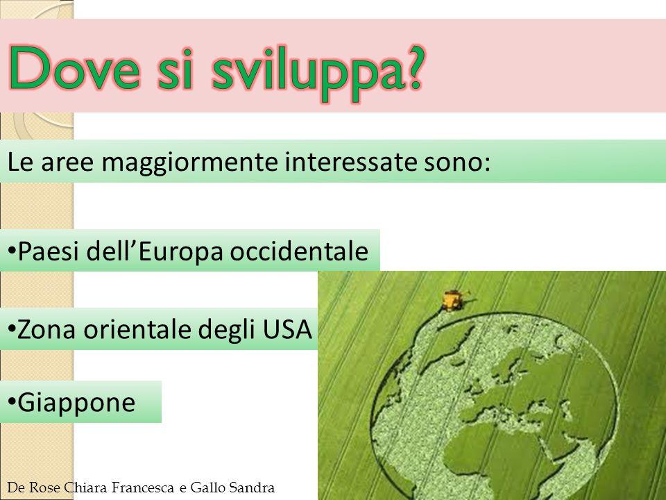 Le aree maggiormente interessate sono: Paesi dell'Europa occidentale Giappone Zona orientale degli USA De Rose Chiara Francesca e Gallo Sandra