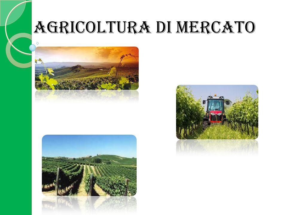 La produzione dell'agricoltura commerciale o di mercato è interamente destinata alla vendita.