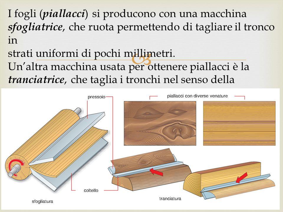  I fogli ( piallacci ) si producono con una macchina sfogliatrice, che ruota permettendo di tagliare il tronco in strati uniformi di pochi millimetri.