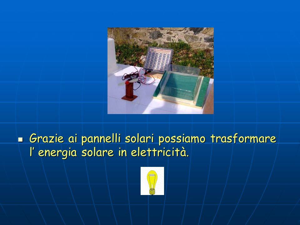 L'energia solare è vitale per gli organismi viventi: fa funzionare il ciclo dell'acqua, riscalda gli organismi e gli ambienti, nutre le piante mediant