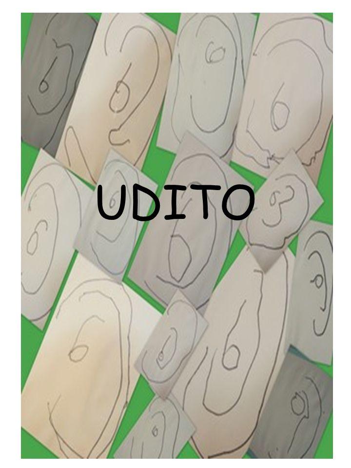 UDITO