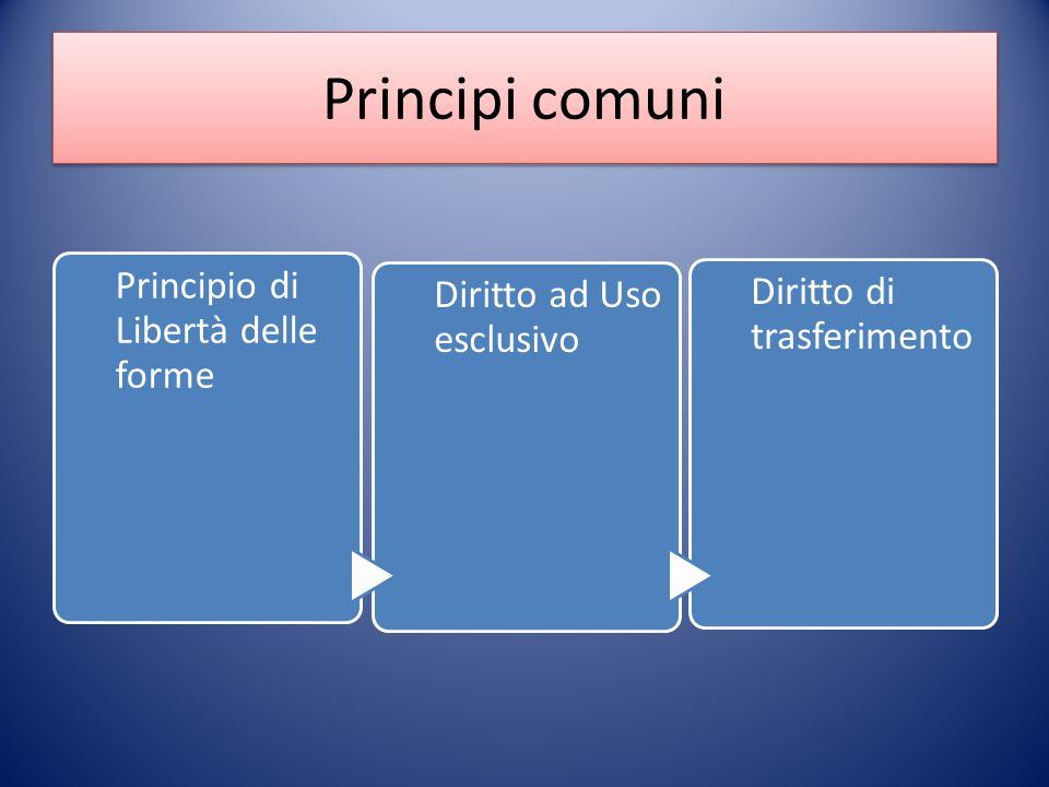 Principi comuni Principio di Libertà delle forme Diritto ad Uso esclusivo Diritto di trasferimento