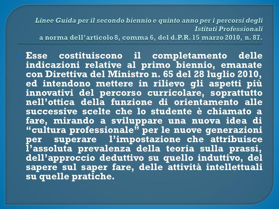  Esse costituiscono il completamento delle indicazioni relative al primo biennio, emanate con Direttiva del Ministro n.