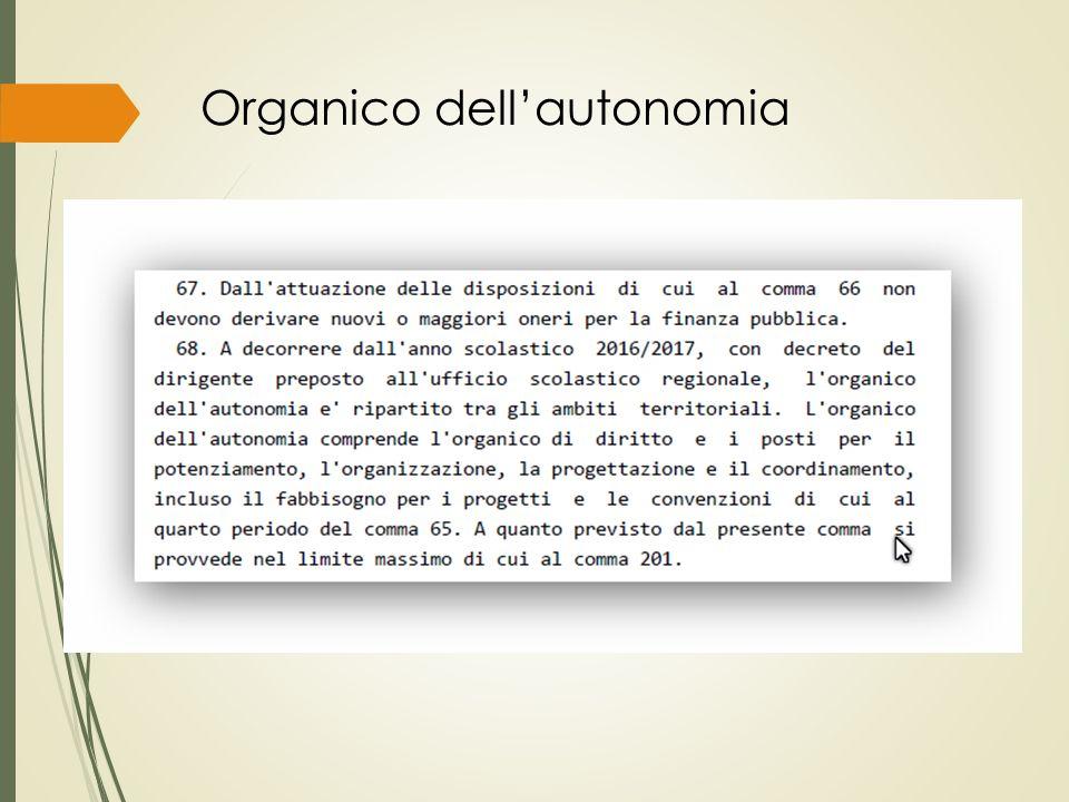 Organico dell'autonomia