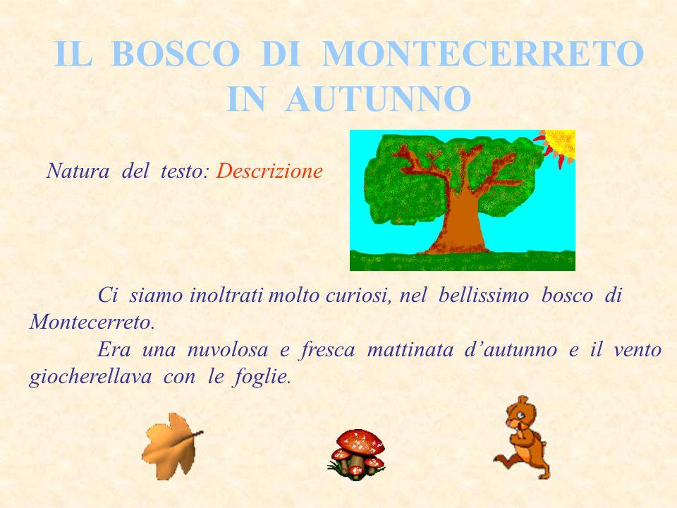 IL BOSCO DI MONTECERRETO IN AUTUNNO Natura del testo: Descrizione Ci siamo inoltrati molto curiosi, nel bellissimo bosco di Montecerreto.