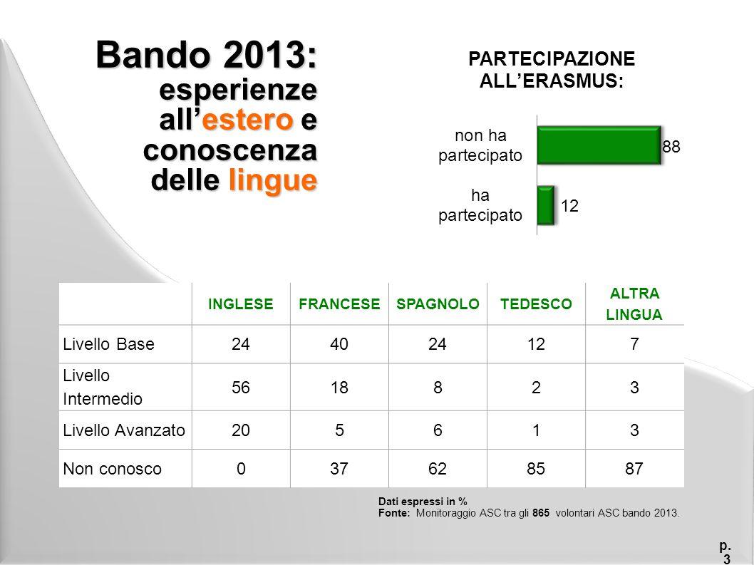 Bando 2013: soddisfazione per l'esperienza p.