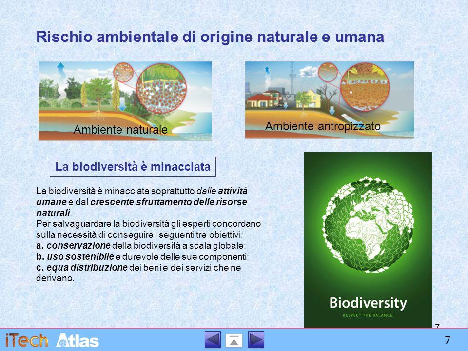 7 Rischio ambientale di origine naturale e umana Ambiente naturale Ambiente antropizzato La biodiversità è minacciata La biodiversità è minacciata soprattutto dalle attività umane e dal crescente sfruttamento delle risorse naturali.