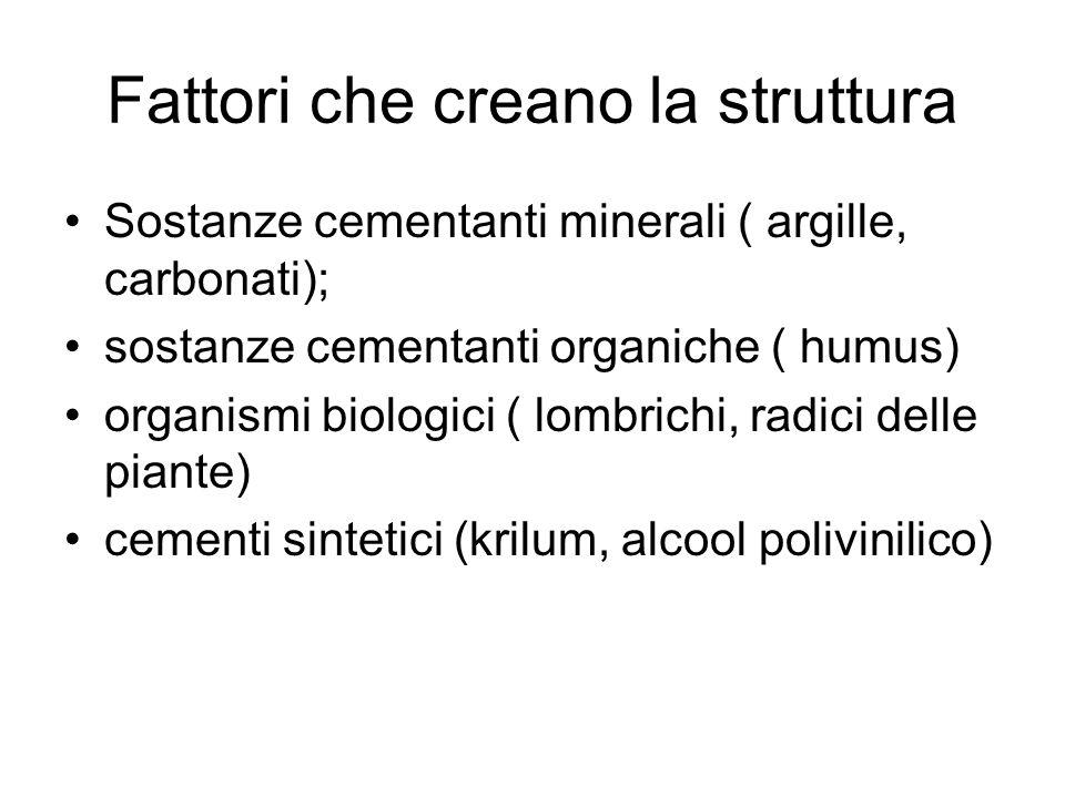 Fattori che creano la struttura Sostanze cementanti minerali ( argille, carbonati); sostanze cementanti organiche ( humus) organismi biologici ( lombrichi, radici delle piante) cementi sintetici (krilum, alcool polivinilico)