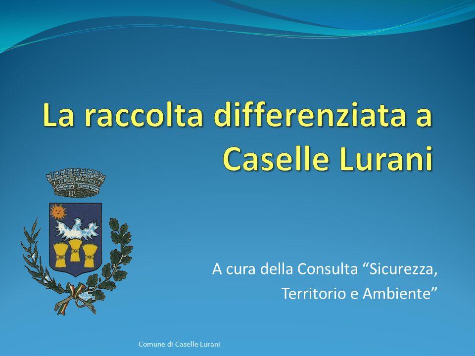 A cura della Consulta Sicurezza, Territorio e Ambiente Comune di Caselle Lurani