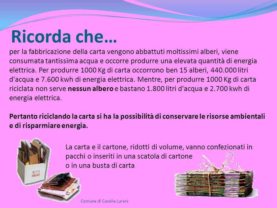 Ricorda che… Comune di Caselle Lurani per la fabbricazione della carta vengono abbattuti moltissimi alberi, viene consumata tantissima acqua e occorre produrre una elevata quantità di energia elettrica.