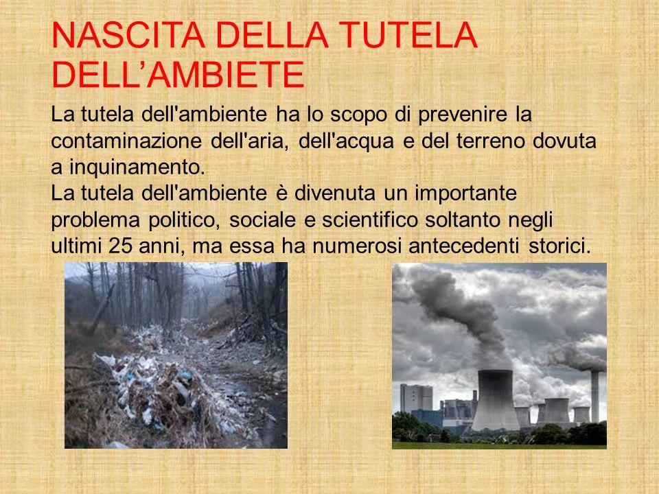 NASCITA DELLA TUTELA DELL'AMBIETE La tutela dell'ambiente ha lo scopo di prevenire la contaminazione dell'aria, dell'acqua e del terreno dovuta a inqu