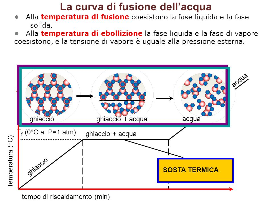 Temperatura (°C) tempo di riscaldamento (min) T f (0°C a P=1 atm) ghiaccio ghiaccio + acqua acqua SOSTA TERMICA ghiaccioghiaccio + acqua acqua La curva di fusione dell'acqua Alla temperatura di fusione coesistono la fase liquida e la fase solida.