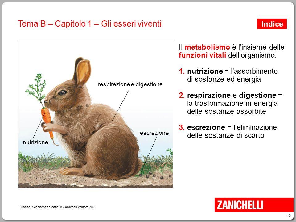 13 Tibone, Facciamo scienze © Zanichelli editore 2011 Tema B – Capitolo 1 – Gli esseri viventi nutrizione respirazione e digestione Il metabolismo è l