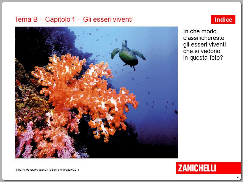 2 Tibone, Facciamo scienze © Zanichelli editore 2011 Tema B – Capitolo 1 – Gli esseri viventi In che modo classifichereste gli esseri viventi che si v