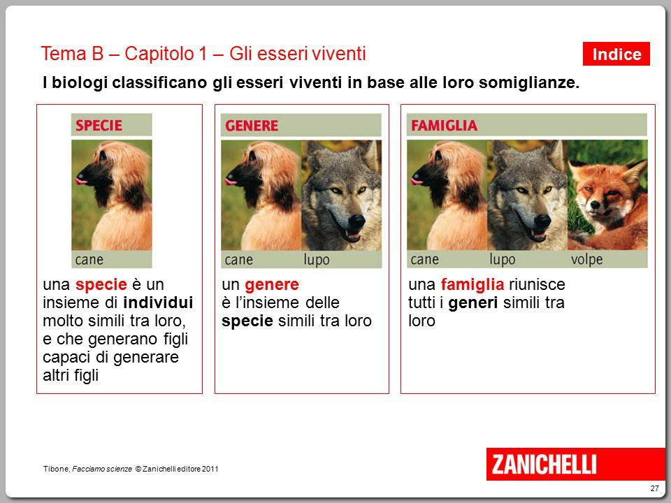 27 Tibone, Facciamo scienze © Zanichelli editore 2011 Tema B – Capitolo 1 – Gli esseri viventi I biologi classificano gli esseri viventi in base alle