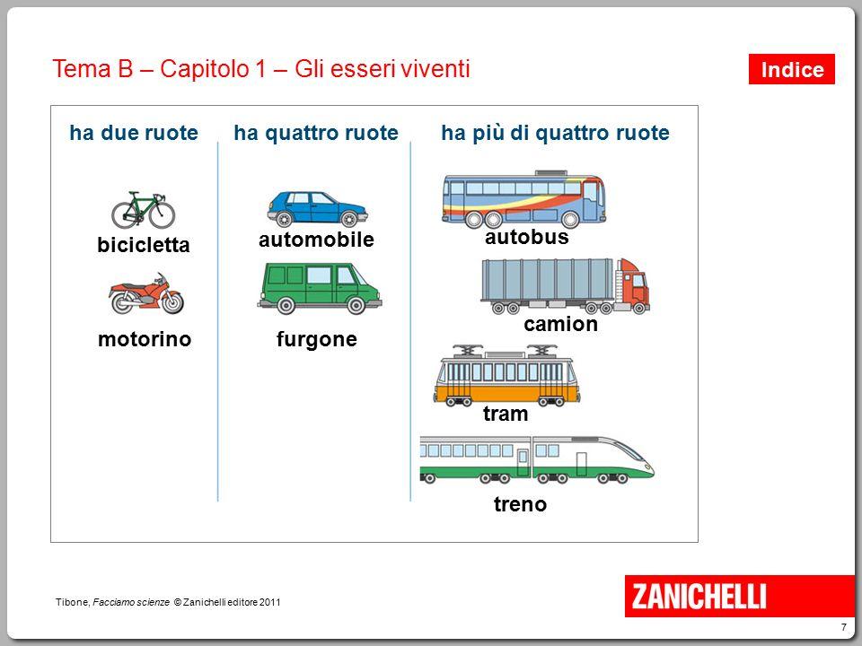 7 Tibone, Facciamo scienze © Zanichelli editore 2011 Tema B – Capitolo 1 – Gli esseri viventi ha due ruote bicicletta ha quattro ruoteha più di quattr