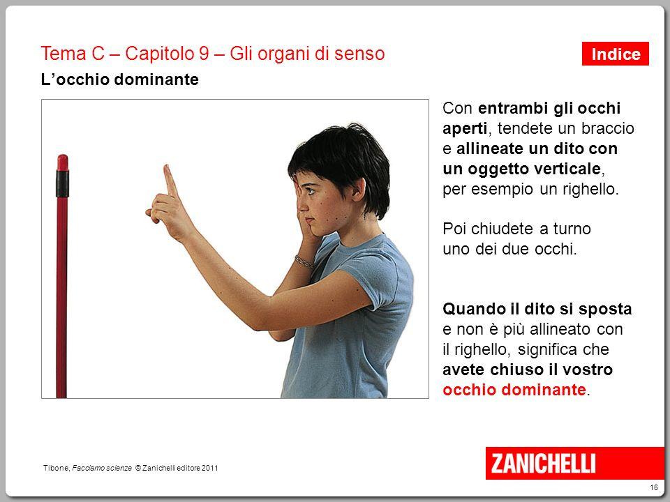 16 Tibone, Facciamo scienze © Zanichelli editore 2011 Tema C – Capitolo 9 – Gli organi di senso L'occhio dominante Con entrambi gli occhi aperti, tend