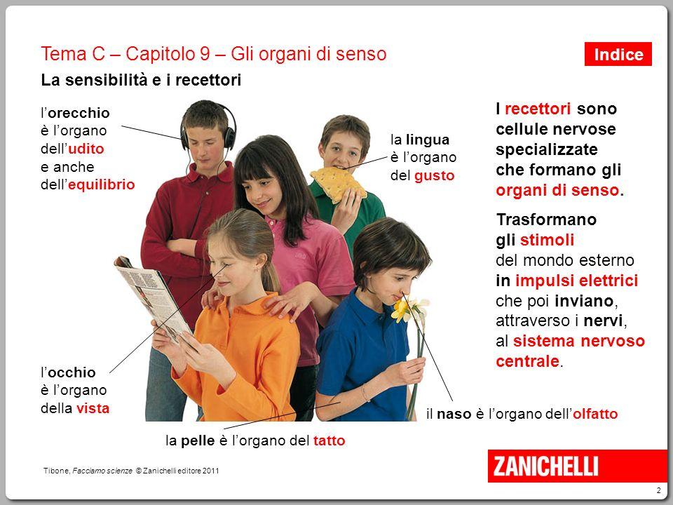 2 Tibone, Facciamo scienze © Zanichelli editore 2011 Tema C – Capitolo 9 – Gli organi di senso La sensibilità e i recettori I recettori sono cellule n
