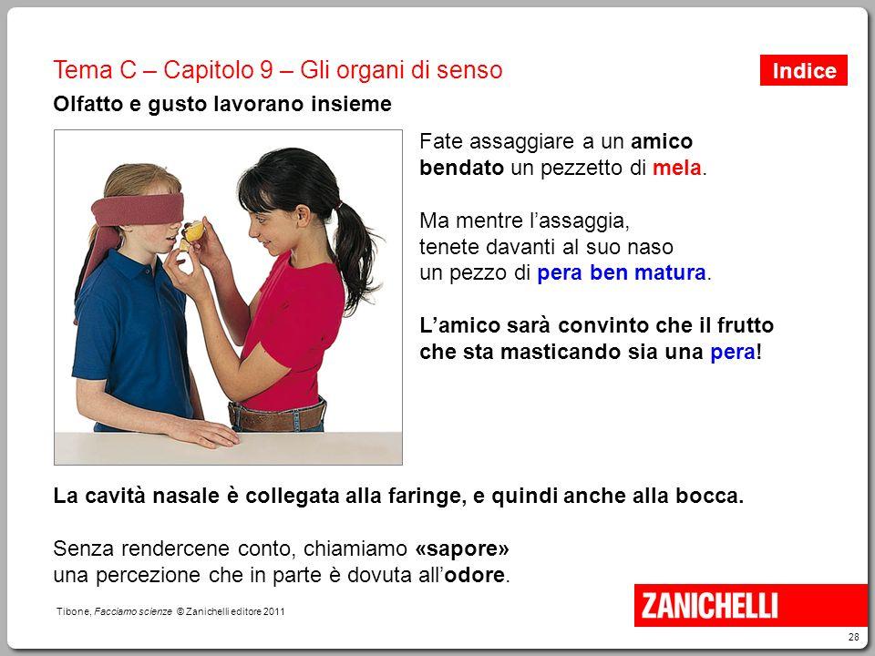 28 Tibone, Facciamo scienze © Zanichelli editore 2011 Tema C – Capitolo 9 – Gli organi di senso Olfatto e gusto lavorano insieme Fate assaggiare a un
