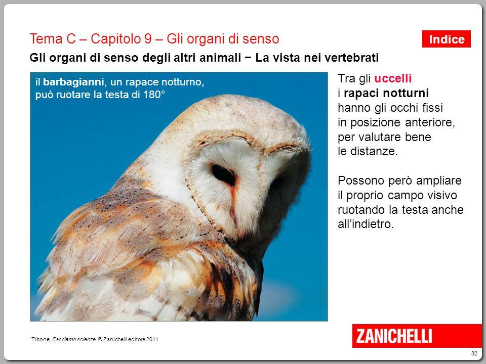 32 Tibone, Facciamo scienze © Zanichelli editore 2011 Tema C – Capitolo 9 – Gli organi di senso Gli organi di senso degli altri animali − La vista nei