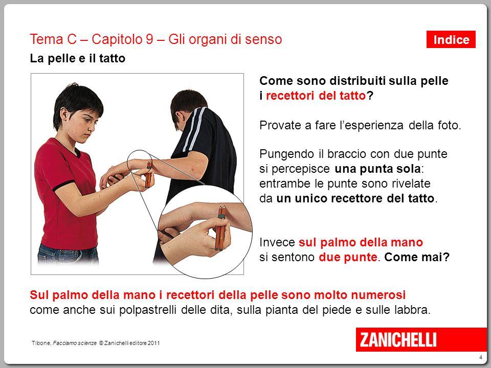 4 Tibone, Facciamo scienze © Zanichelli editore 2011 Tema C – Capitolo 9 – Gli organi di senso La pelle e il tatto Come sono distribuiti sulla pelle i