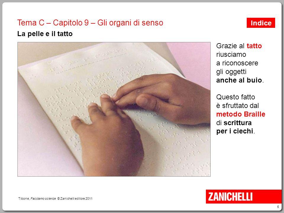 5 Tibone, Facciamo scienze © Zanichelli editore 2011 Tema C – Capitolo 9 – Gli organi di senso La pelle e il tatto Grazie al tatto riusciamo a riconos