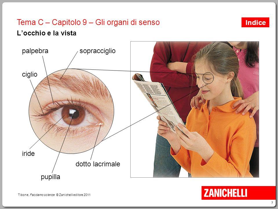 7 Tibone, Facciamo scienze © Zanichelli editore 2011 Tema C – Capitolo 9 – Gli organi di senso L'occhio e la vista palpebrasopracciglio ciglio iride p