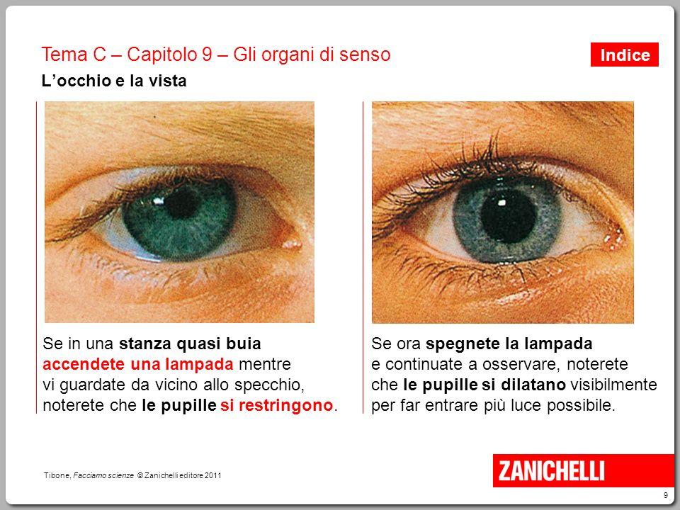 9 Tibone, Facciamo scienze © Zanichelli editore 2011 Tema C – Capitolo 9 – Gli organi di senso L'occhio e la vista Se in una stanza quasi buia accende