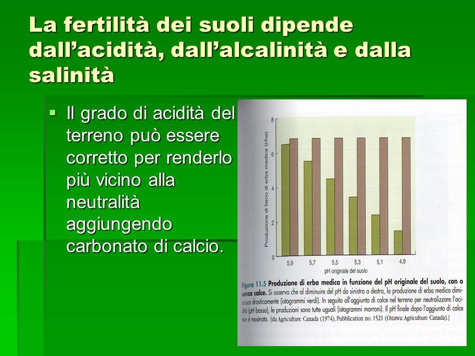 La fertilità dei suoli dipende dall'acidità, dall'alcalinità e dalla salinità  Il grado di acidità del terreno può essere corretto per renderlo più vicino alla neutralità aggiungendo carbonato di calcio.