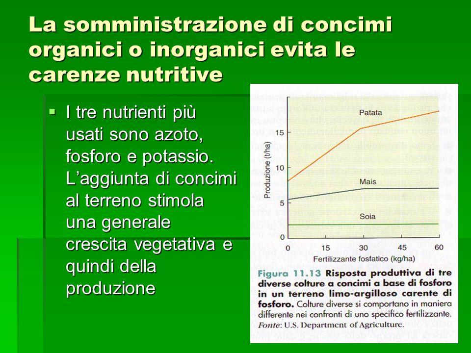 La somministrazione di concimi organici o inorganici evita le carenze nutritive  I tre nutrienti più usati sono azoto, fosforo e potassio.